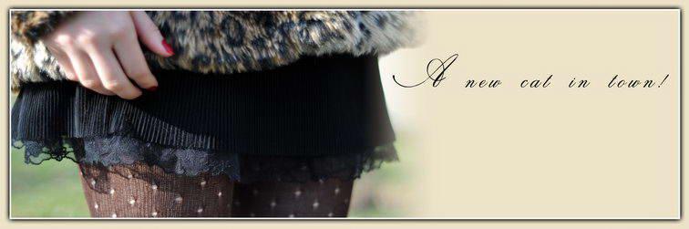 00_cover_leopard_coat2