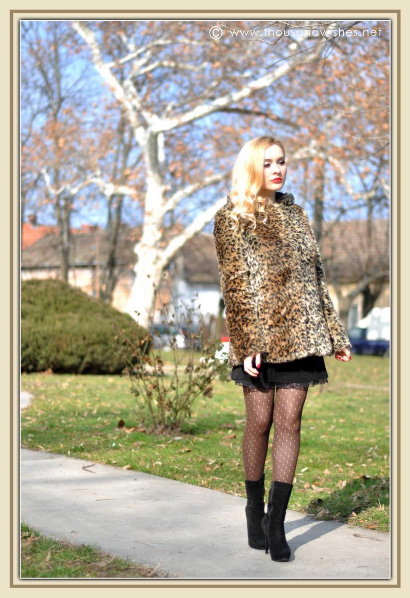 01_leopard_coat