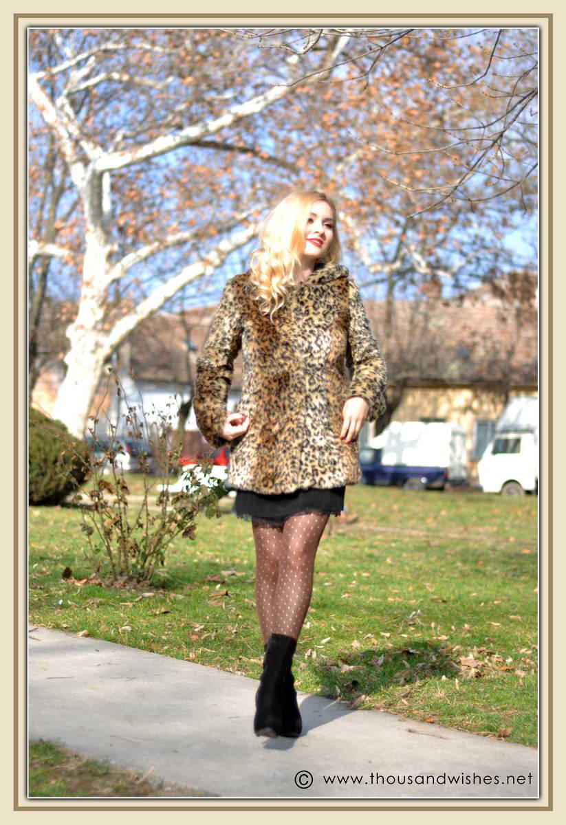 02_leopard_coat