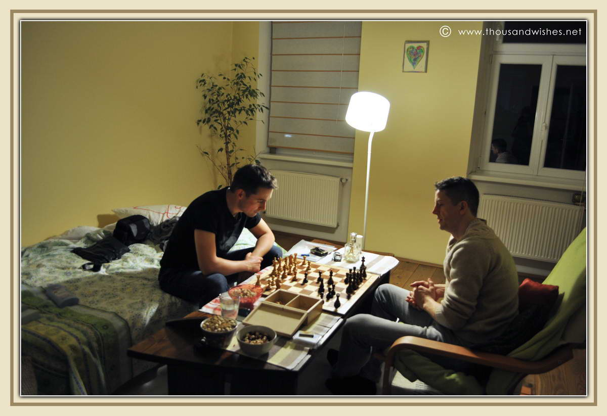 14_play_chess_Vienna
