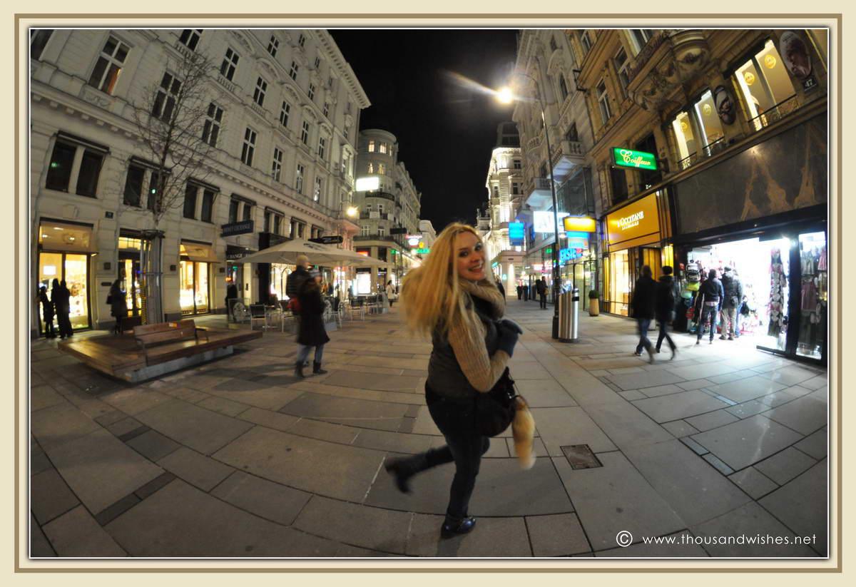 29_Vienna