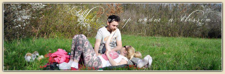 00_cover_bazos_timis_picnic