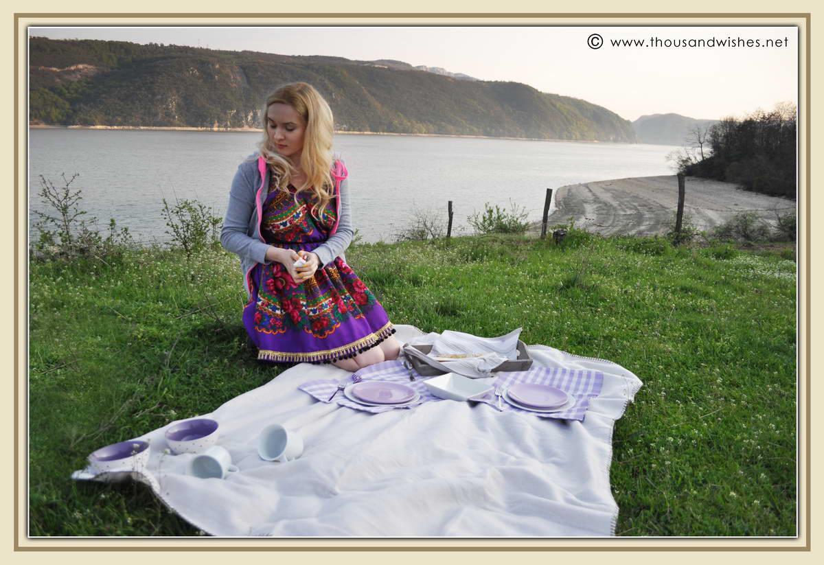 01_danub_river_picnic