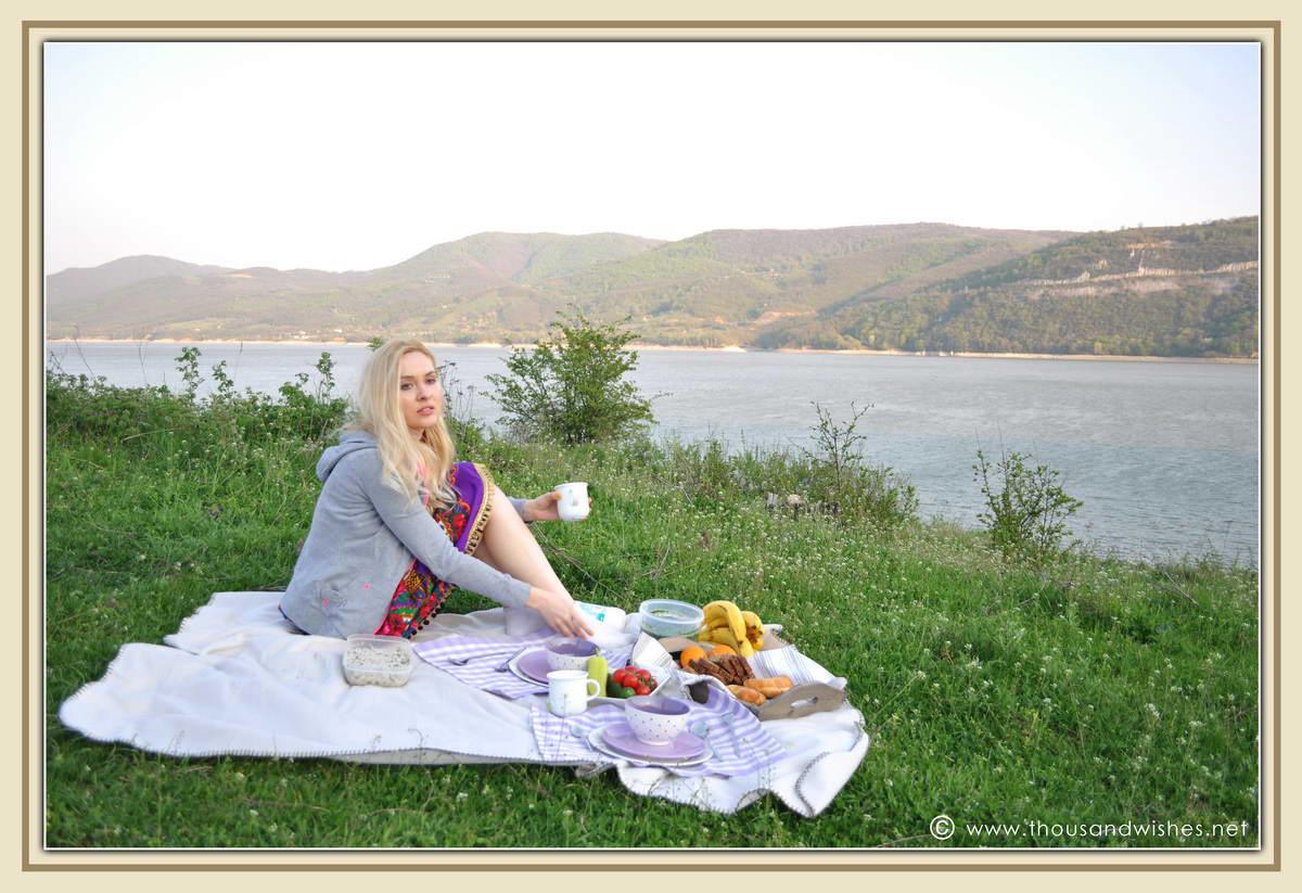03_danub_river_picnic