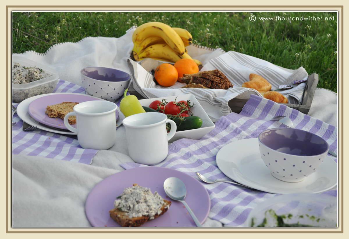 04_danub_river_picnic