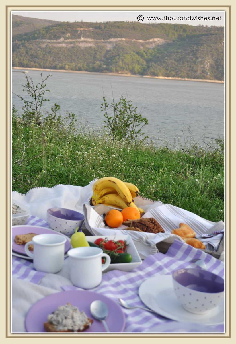 05_danub_river_picnic
