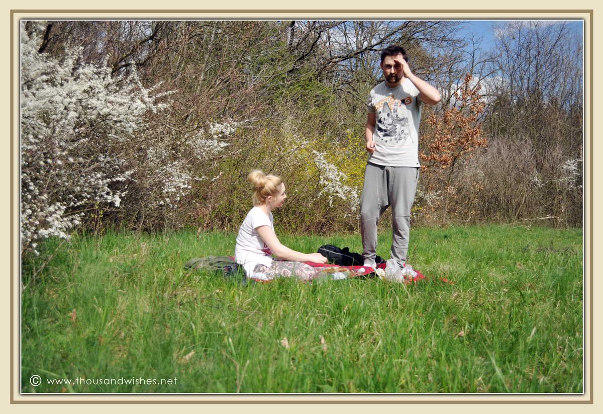 07_bazos_timis_picnic