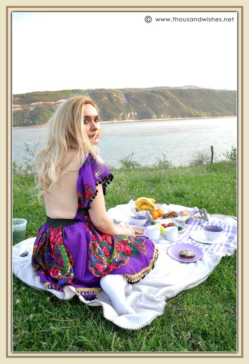 07_danub_river_picnic