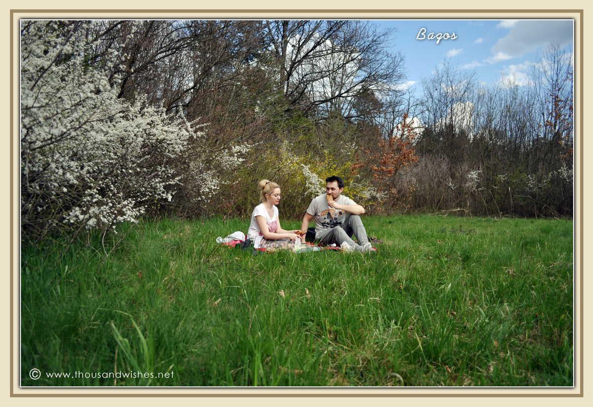 08_bazos_timis_picnic
