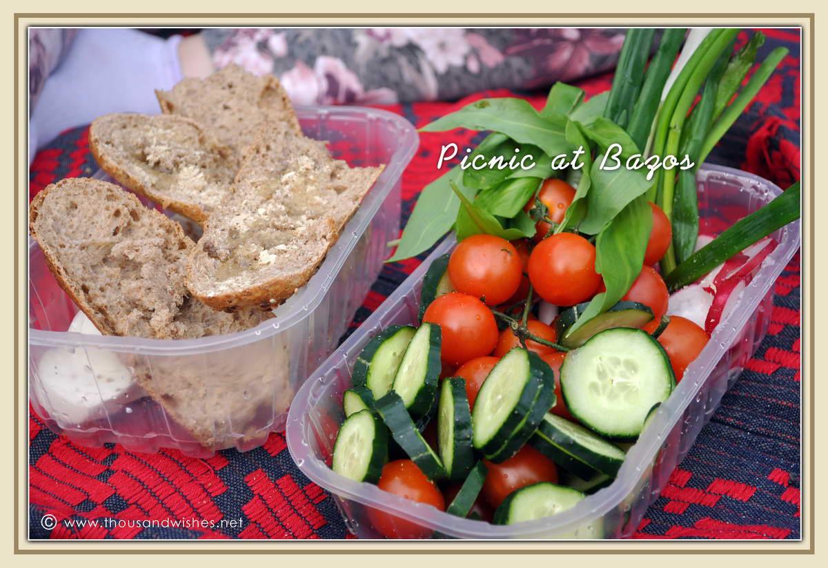 09_bazos_timis_picnic
