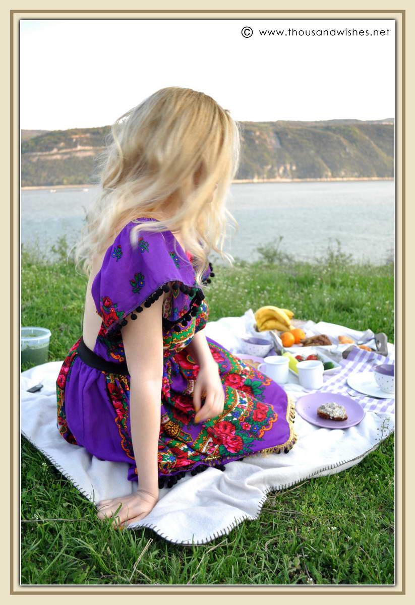 09_danub_river_picnic