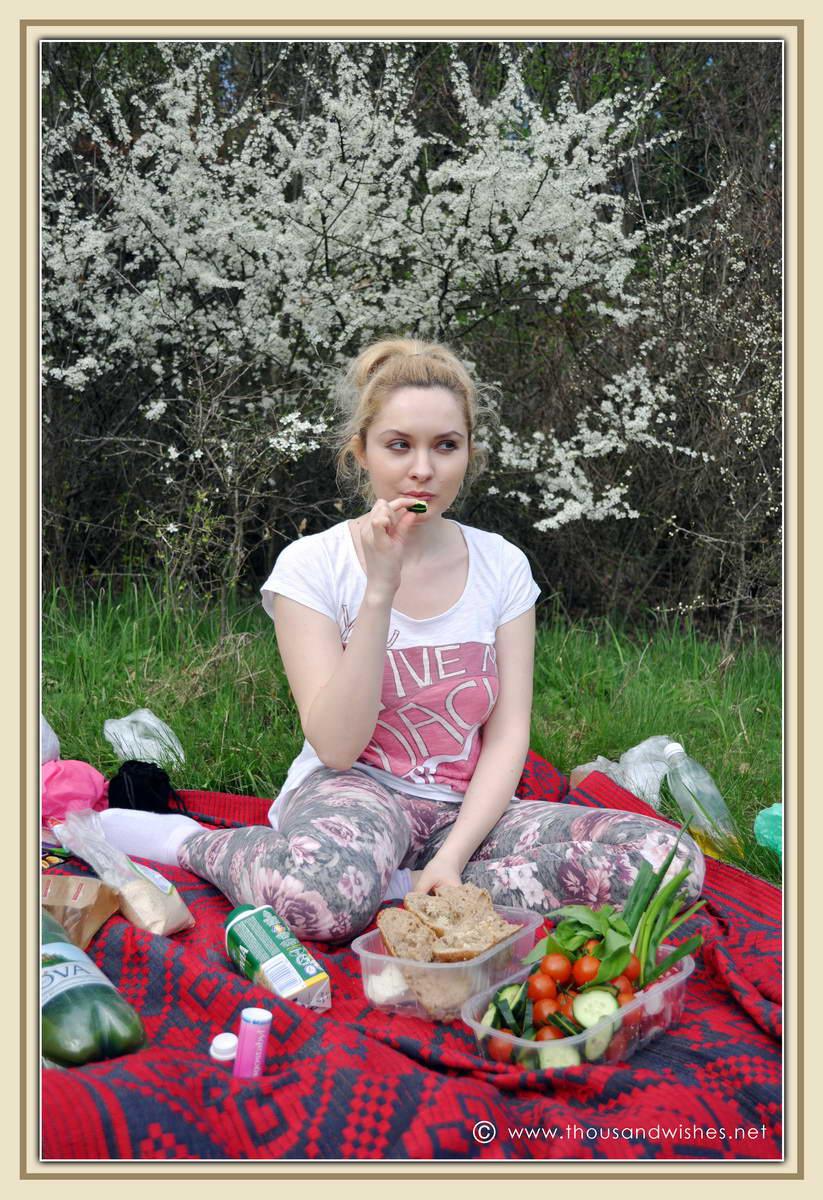 10_bazos_timis_picnic