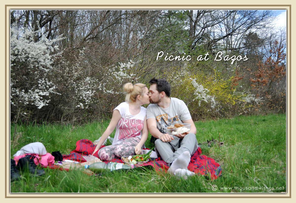 11_bazos_timis_picnic