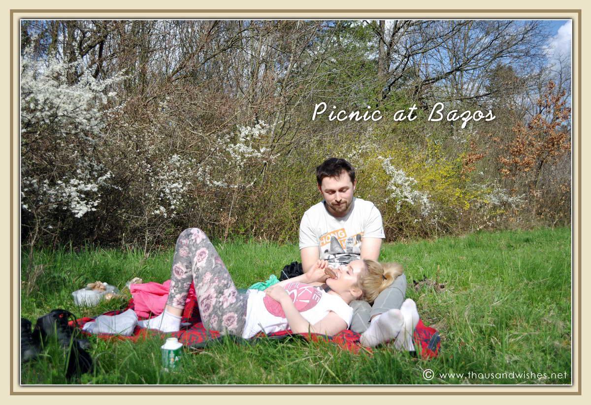 12_bazos_timis_picnic