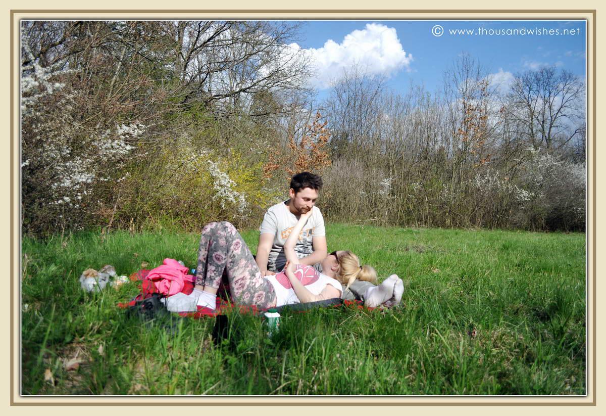 14_bazos_timis_picnic