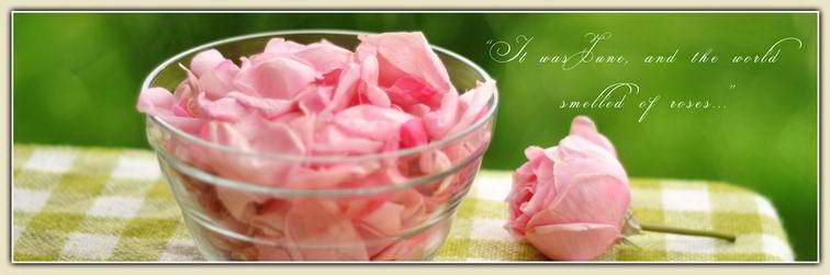 00_cover_pink_roses_petal_jam