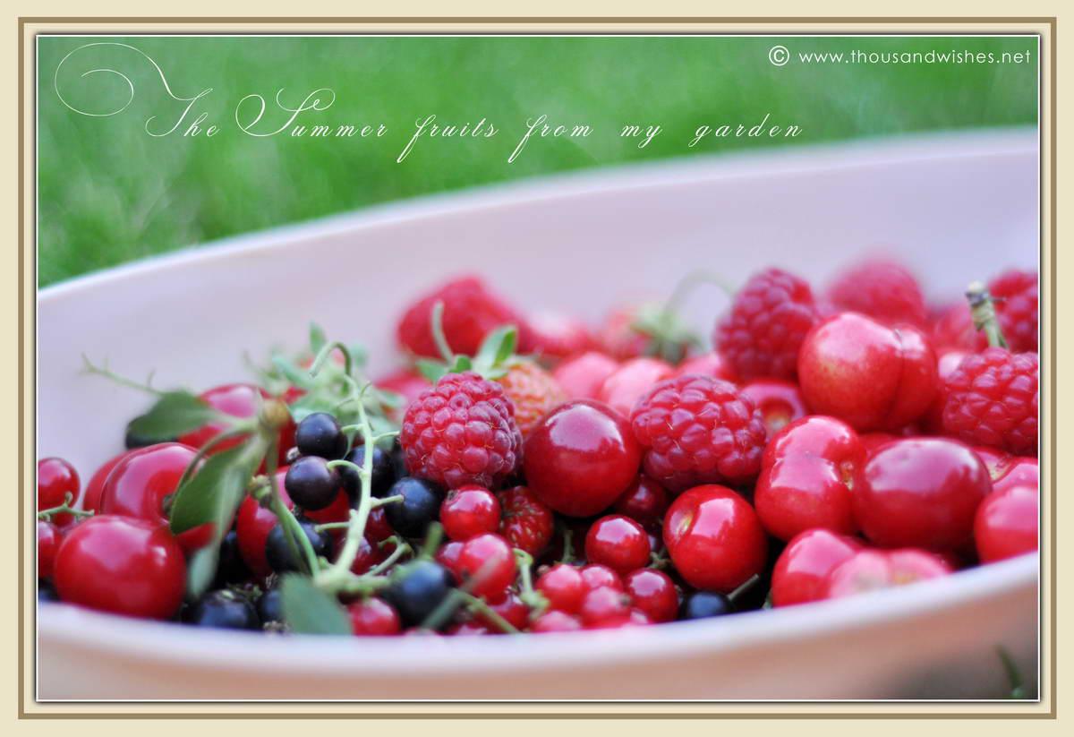 01_summer_fruits_raspberry-strawberry_blackcurrant_redcurrant_cherry