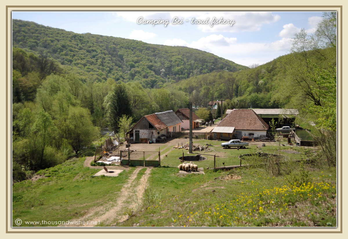 02_camping_bei_trout_fishery_nera_gorges