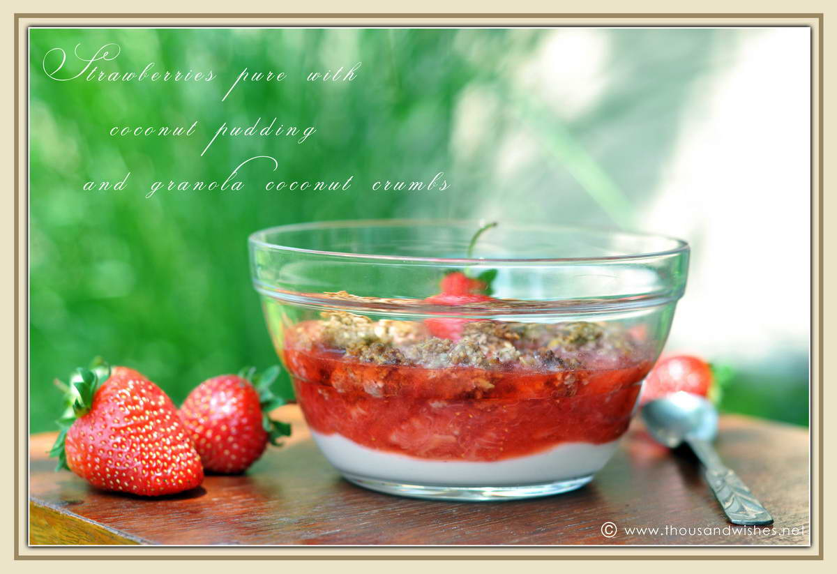 05_strawberries_coconut_pudding_granola