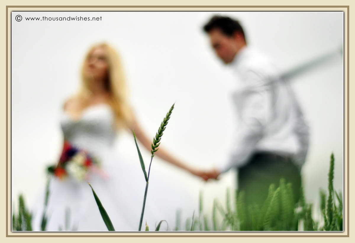 17_wedding_field