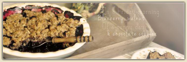 00_cover_blueberry_walnuts_chocolate_cobbler