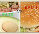Fats, cholesterol...what is good and what's bad for our health? | 4717 Views | Fame 10.25