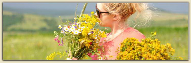00_cover_summer_flowers_bouquet