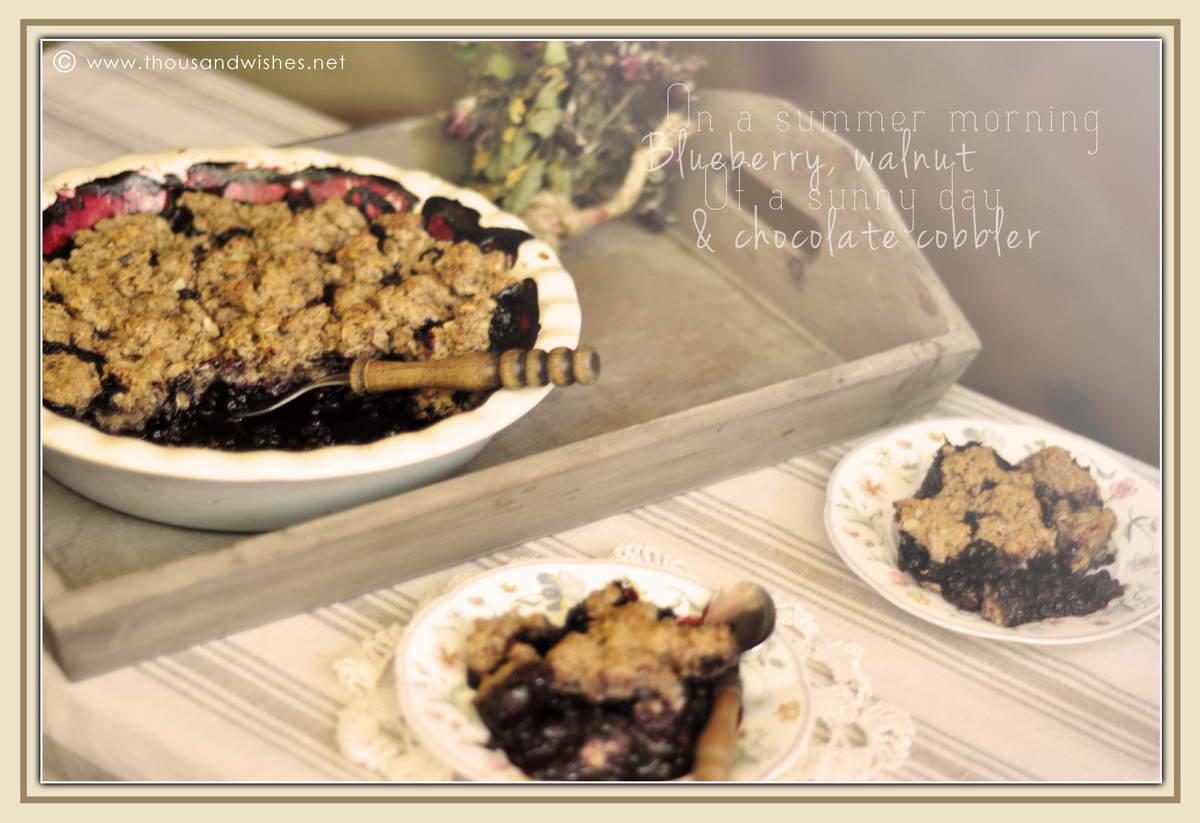 04_blueberry_walnuts_chocolate_cobbler