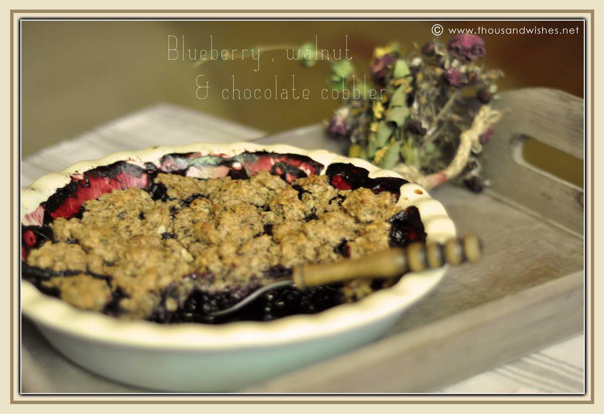 05_blueberry_walnuts_chocolate_cobbler
