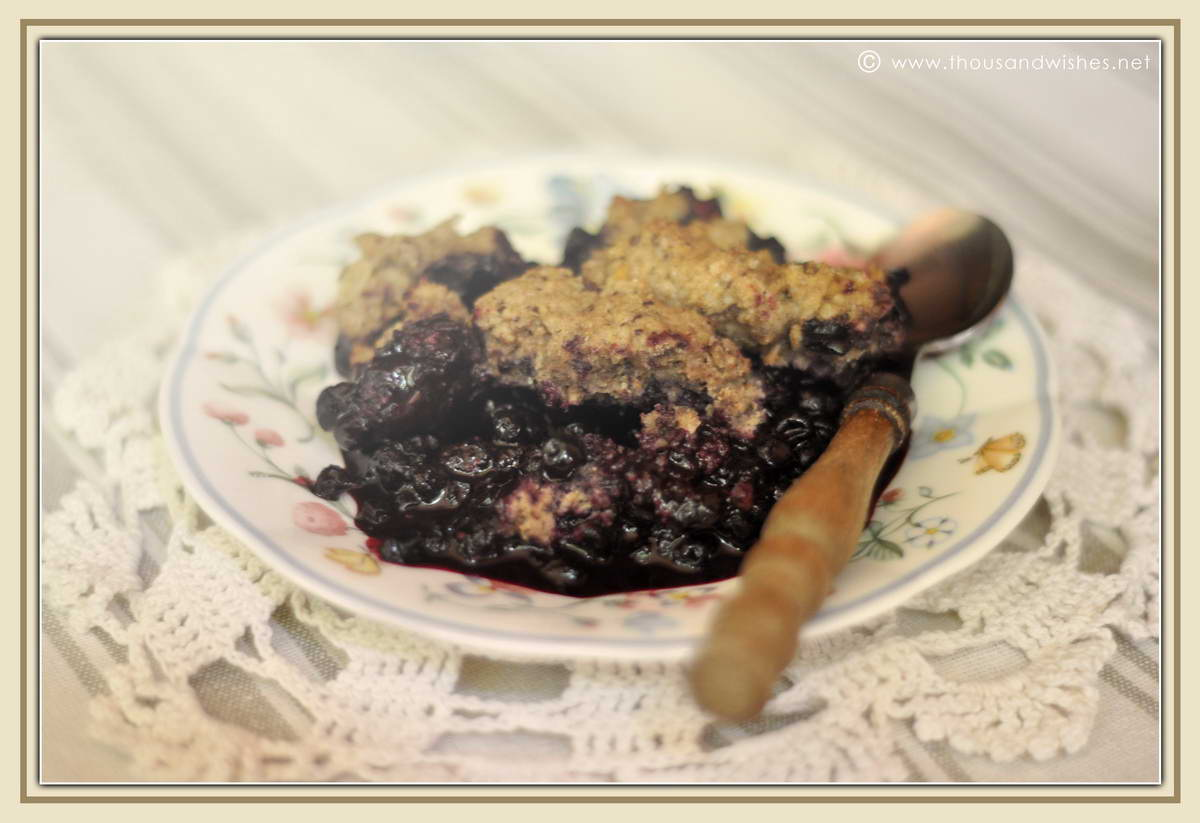 07_blueberry_walnuts_chocolate_cobbler
