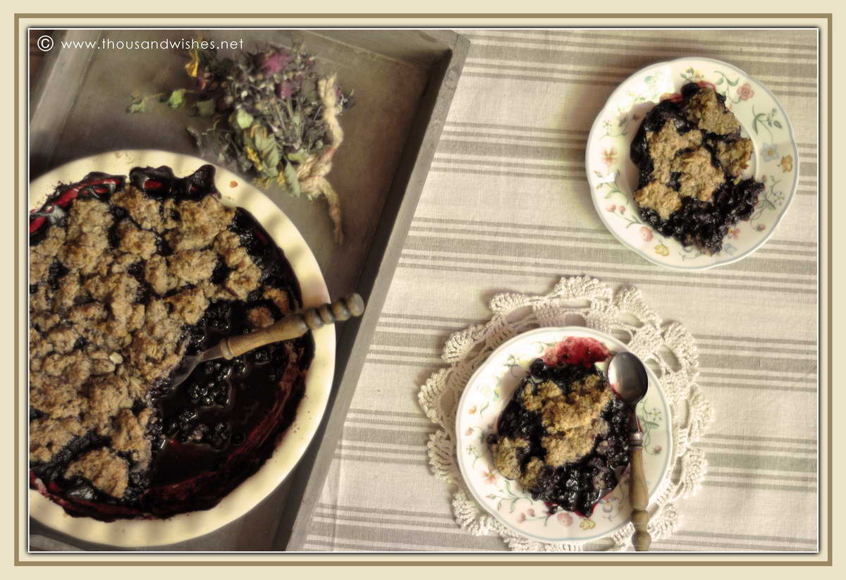 08_blueberry_walnuts_chocolate_cobbler