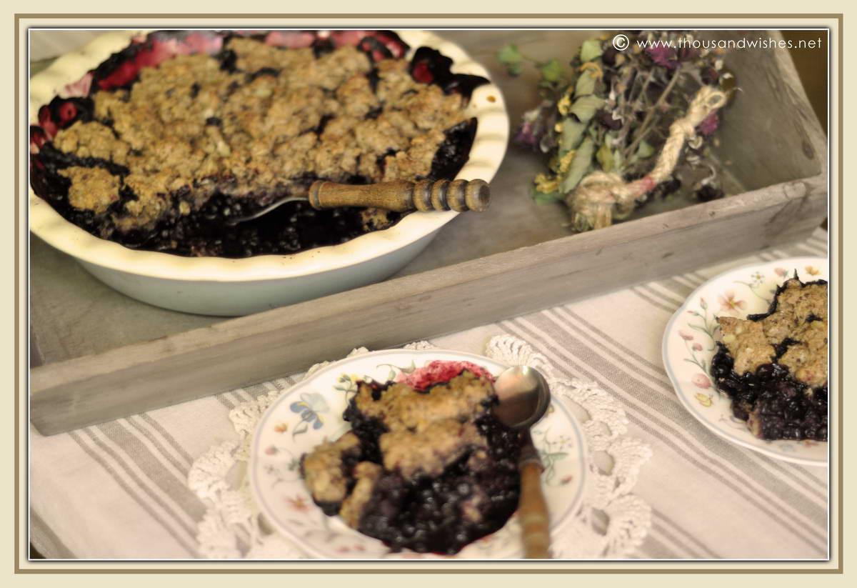 09_blueberry_walnuts_chocolate_cobbler