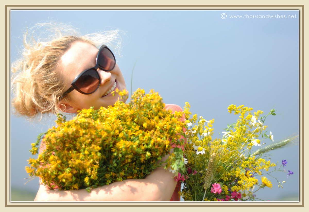 12_summer_bouquet_St_John's_wort_goldenrod