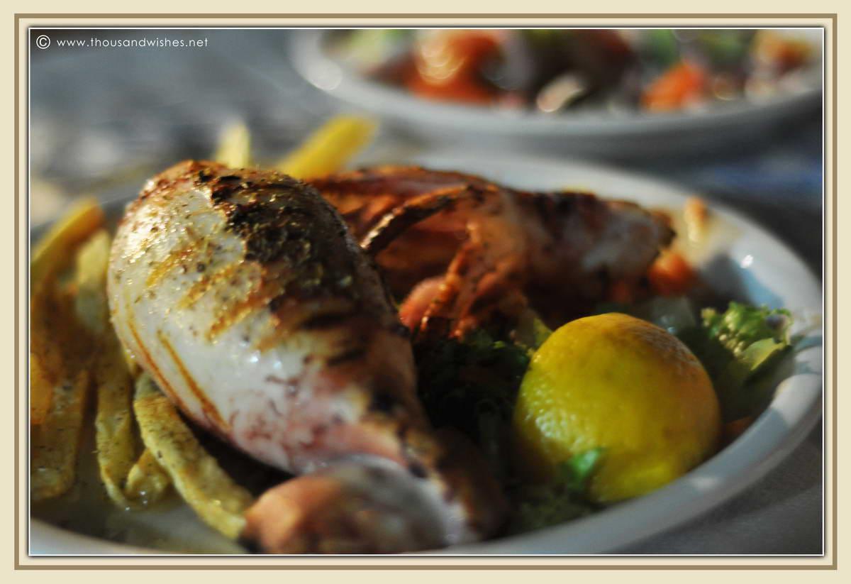 30_agios_nikitas_taverna_klimataria_octopus_squid