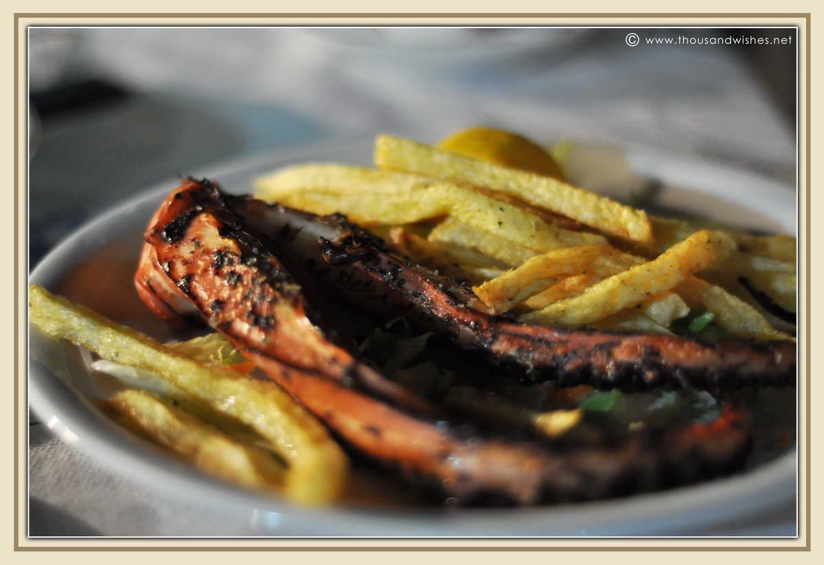 31_agios_nikitas_taverna_klimataria_octopus
