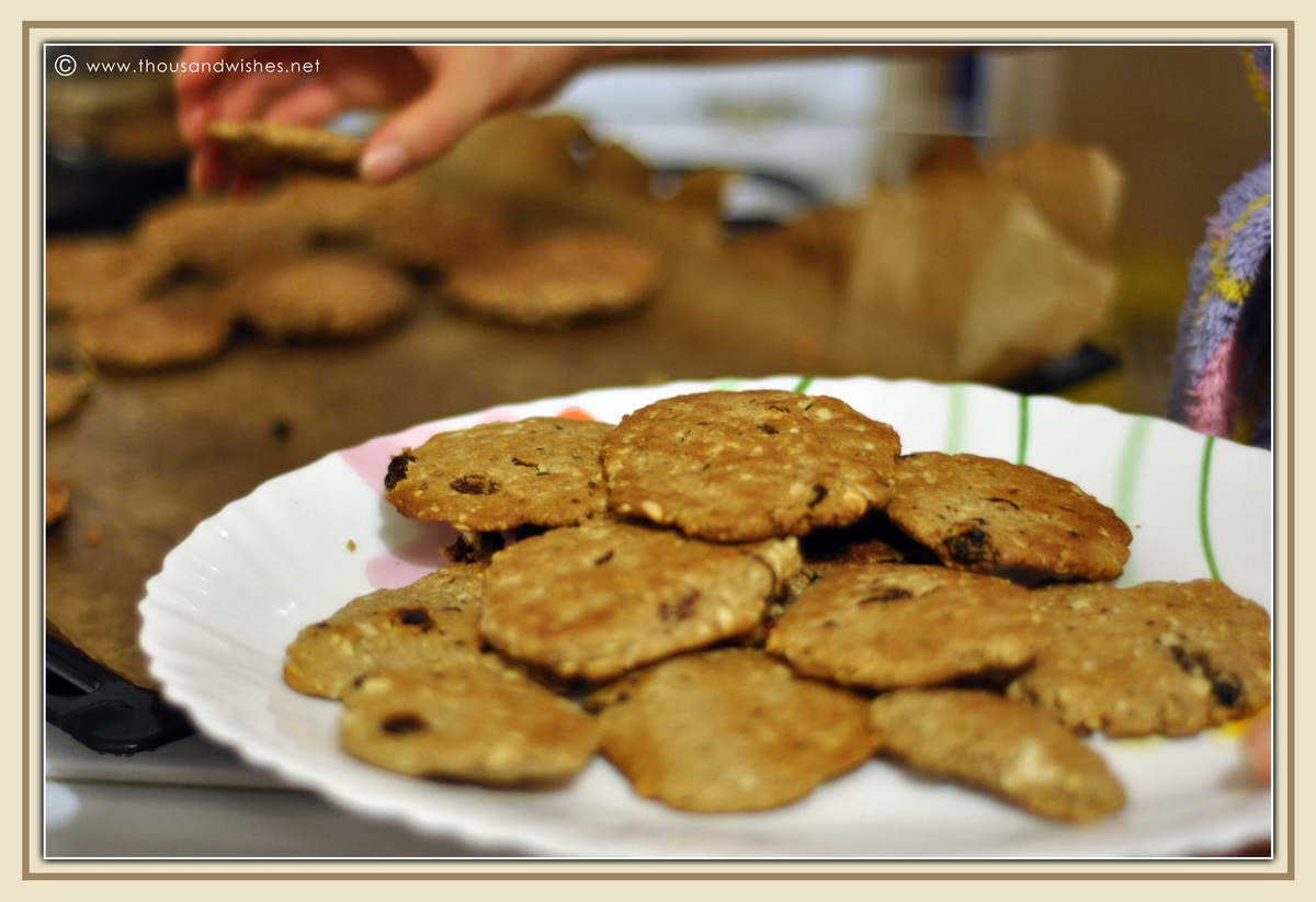 05_whole_grain_dried_fruits_walnuts_cookies_dough