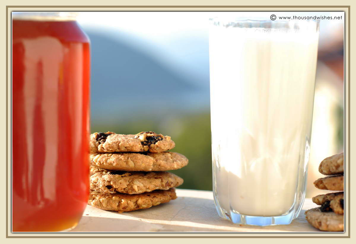07_whole_grain_dried_fruits_walnuts_cookies_dough_honey_milk