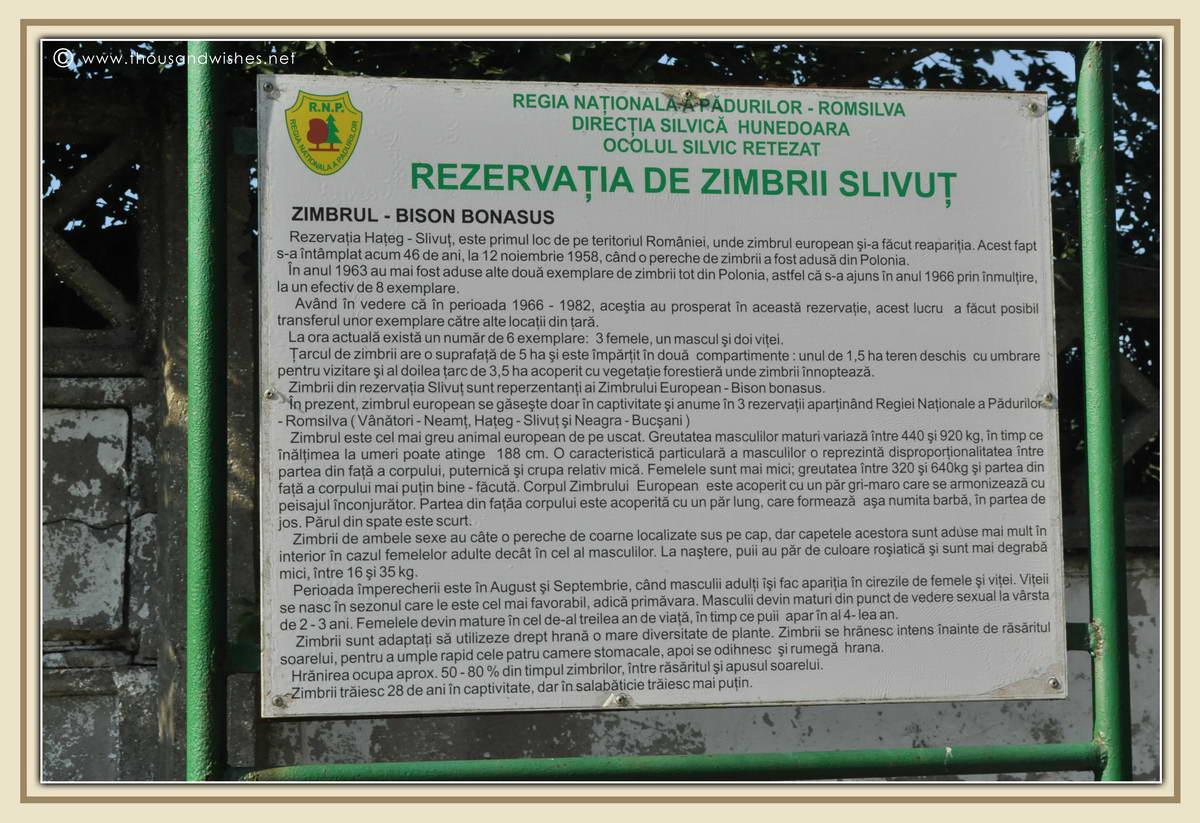 34_Slivut_Bison_Reserve