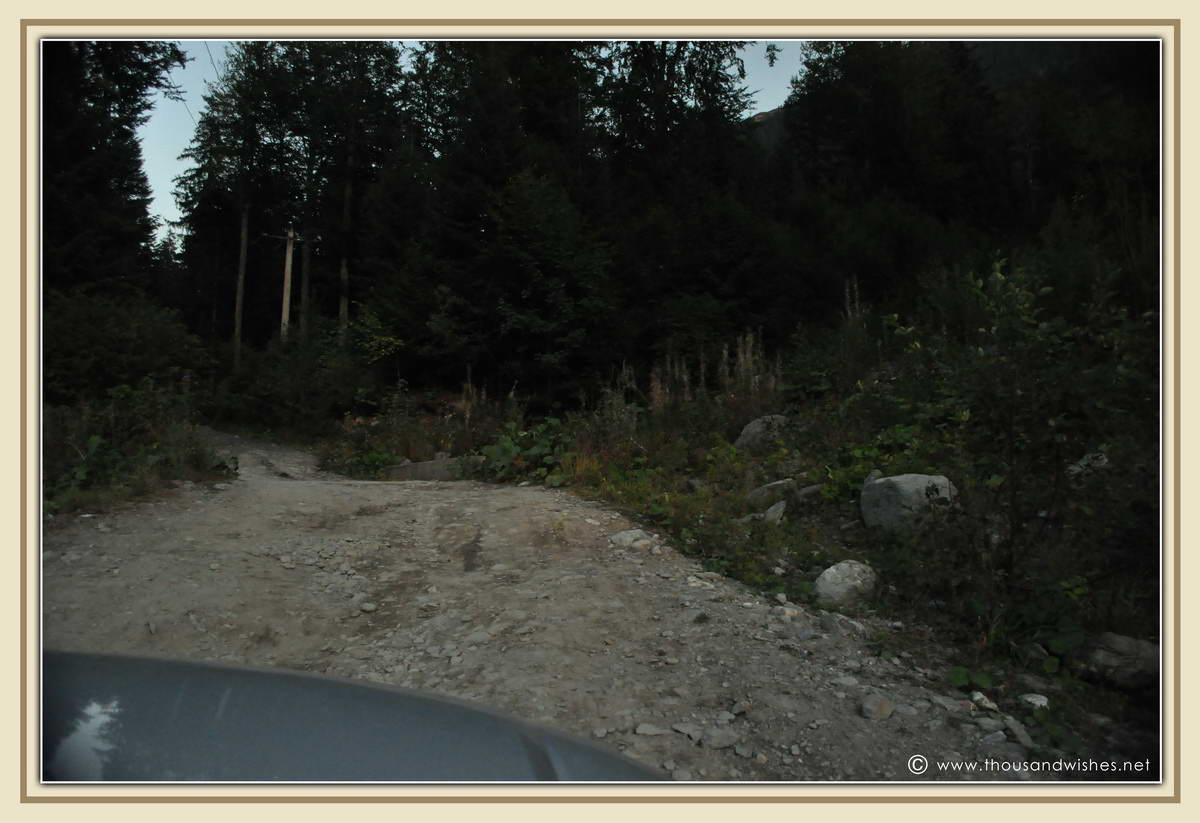 41_road_to_poiana_pelegii_retezat