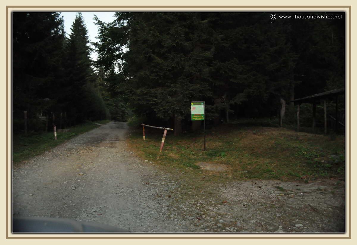 43_road_to_poiana_pelegii_retezat