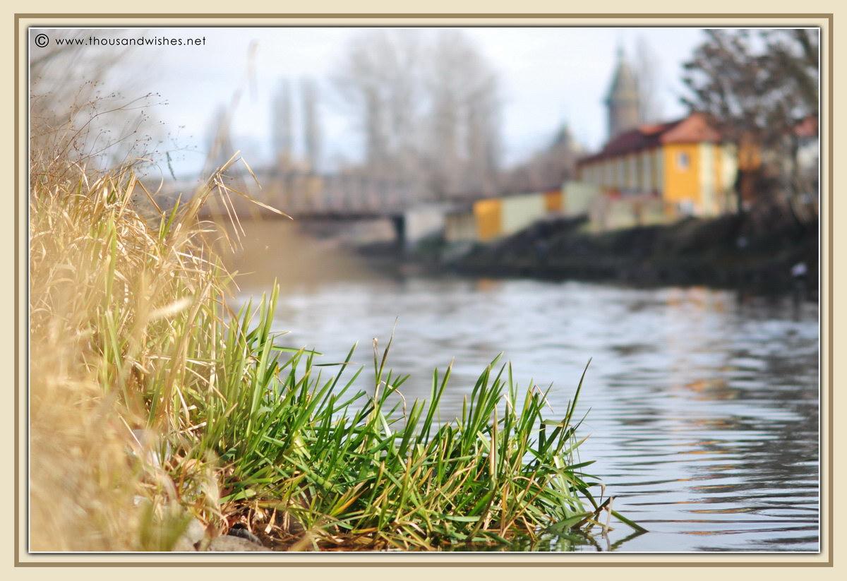03_bega_river_timisoara