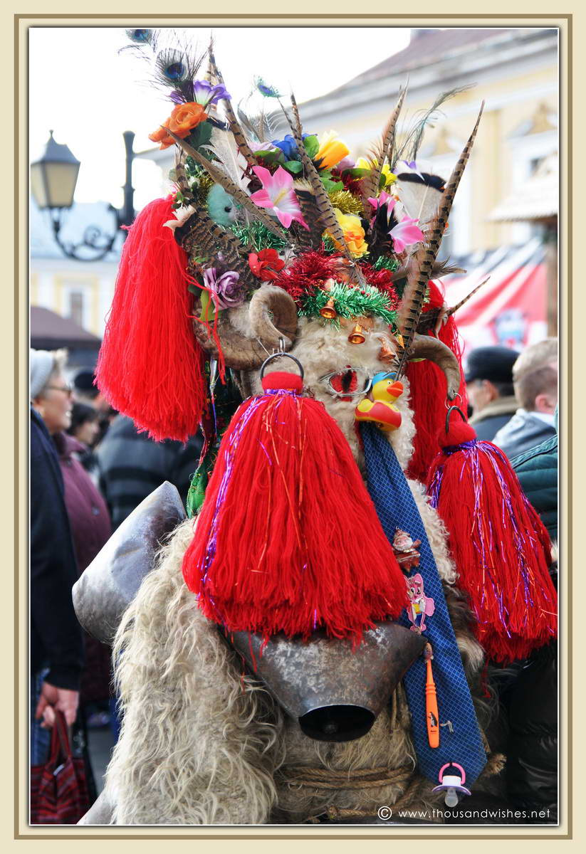 16_marmatia_festival_datini_obiceiuri_iarna