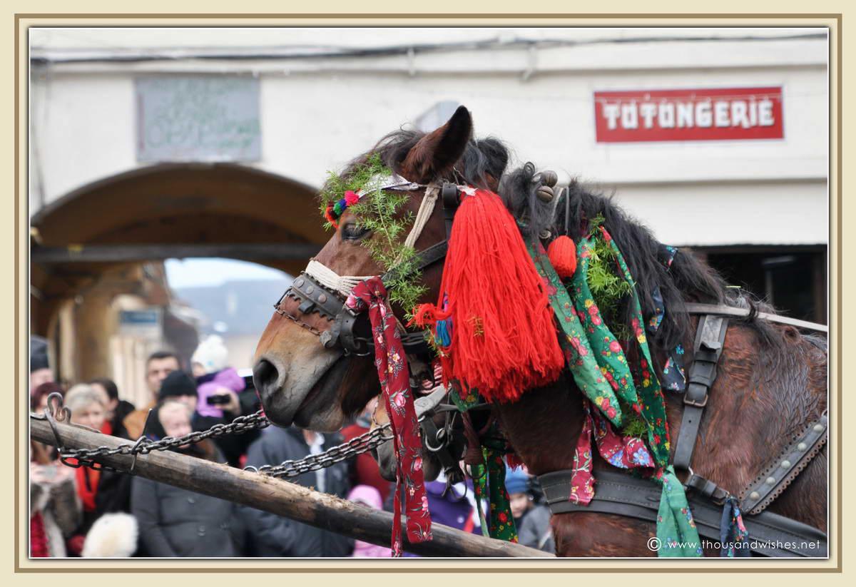 20_marmatia_festival_datini_obiceiuri_iarna