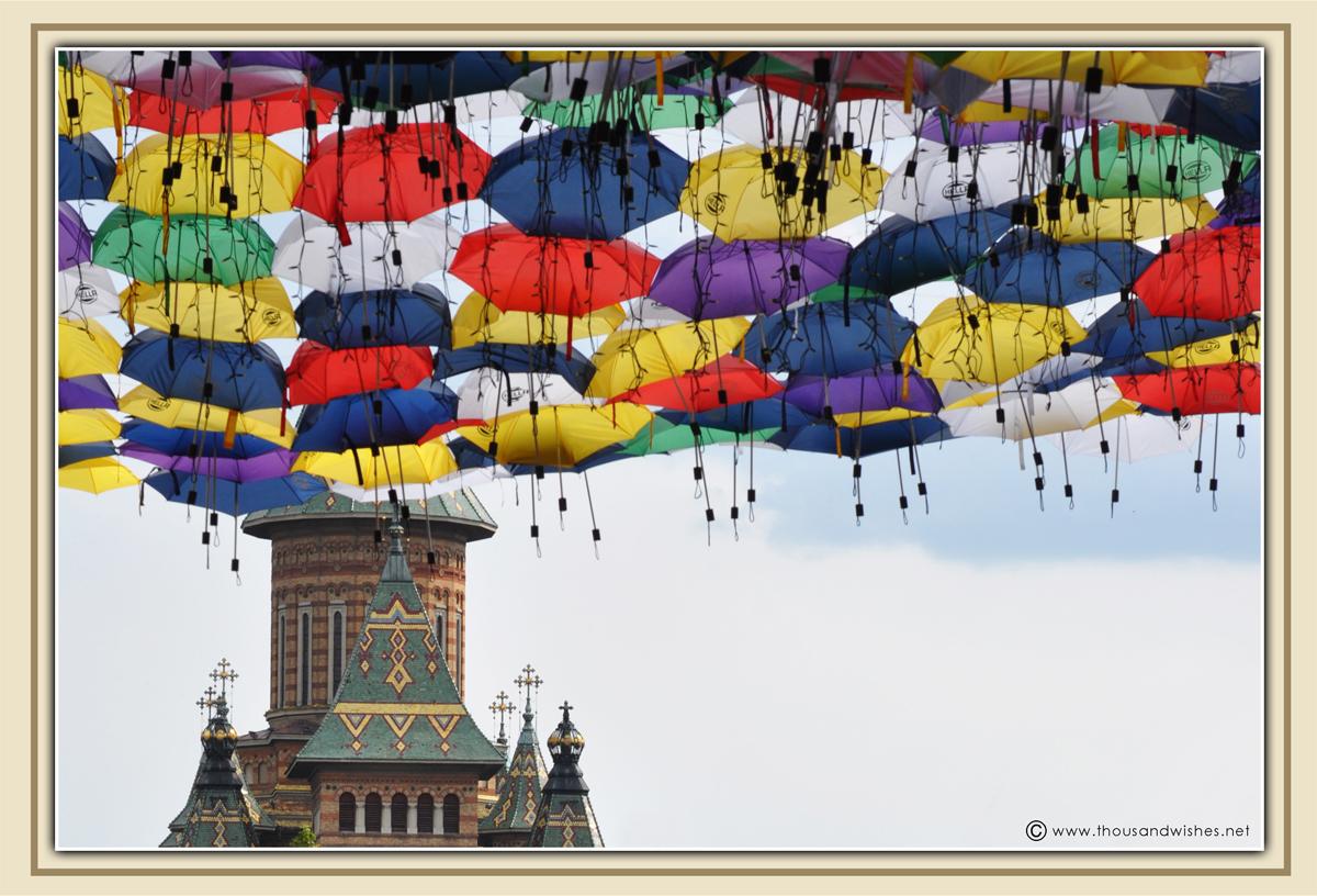 01_timisora_umbrellas