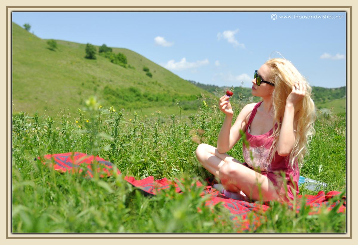 03_picnic_strawberries