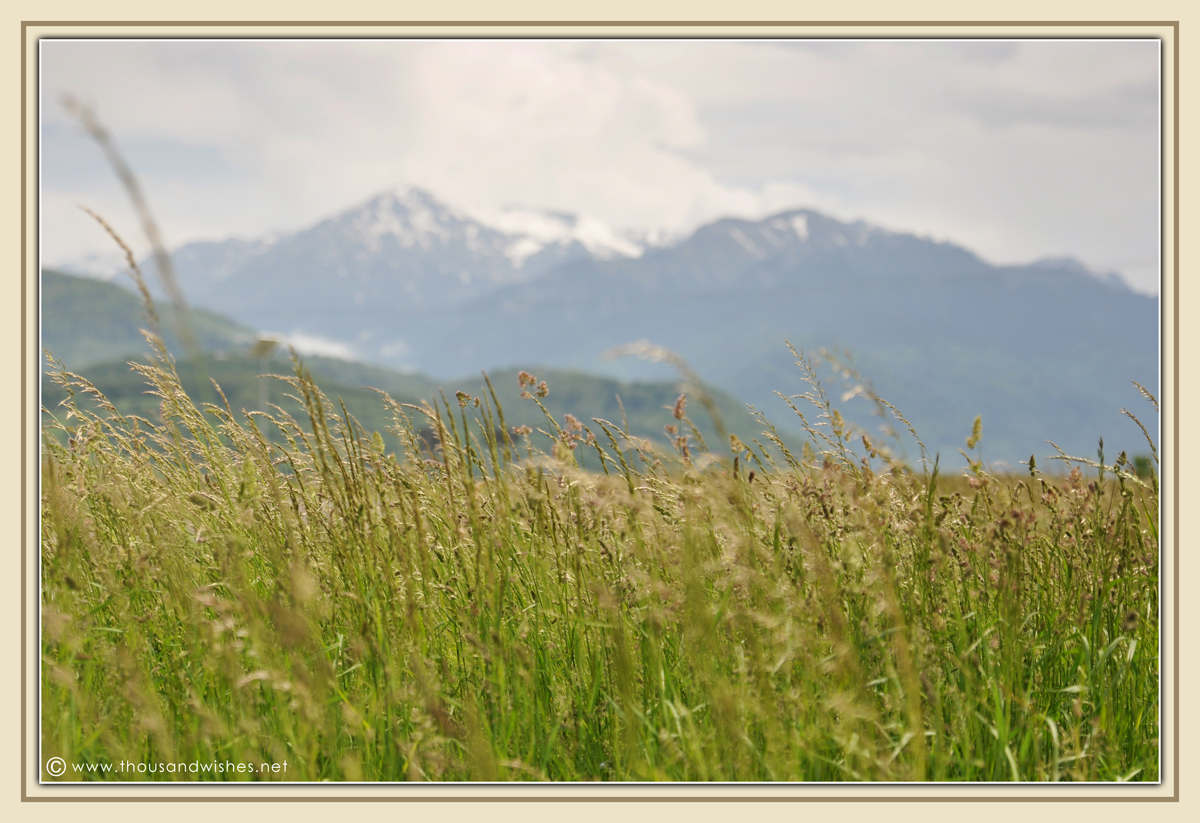 02_carpathians_mountains