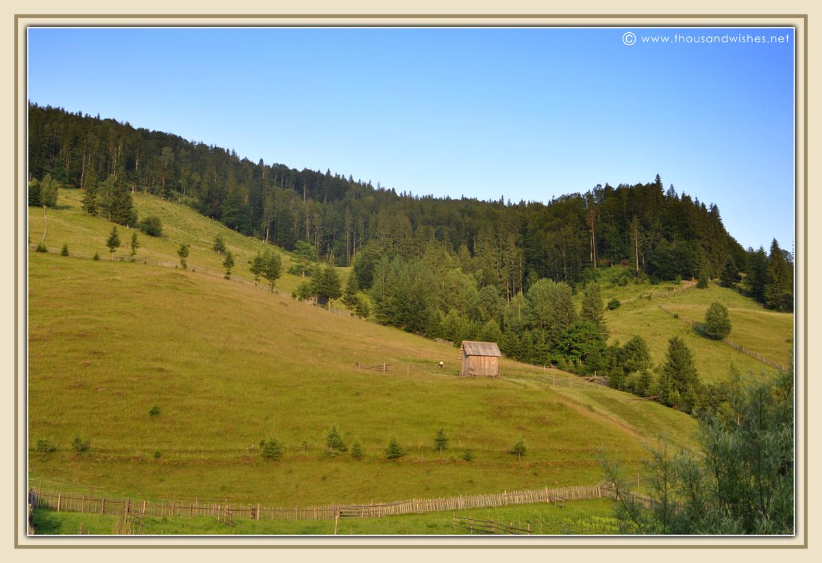 11_bucovina_romania_mountains