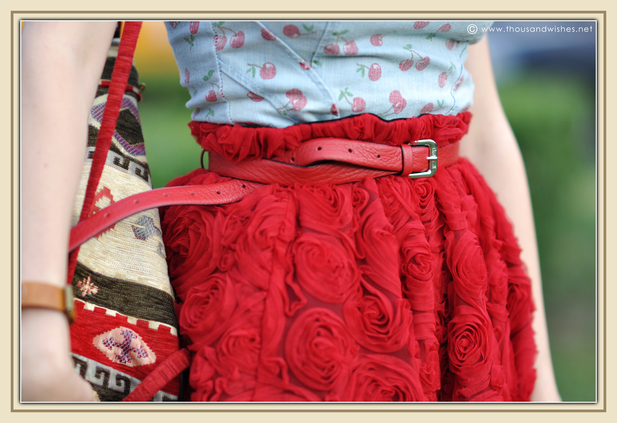 12_red_roses_skirt_jeans_top