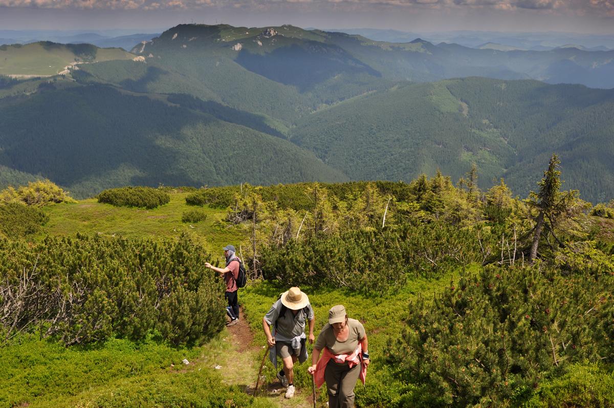 13_giumalau_mountains_bucovina_romania