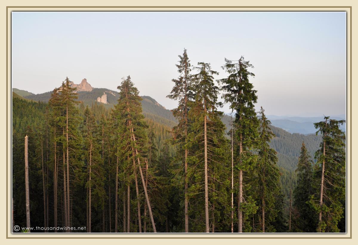 14_bucovina_romania_mountains